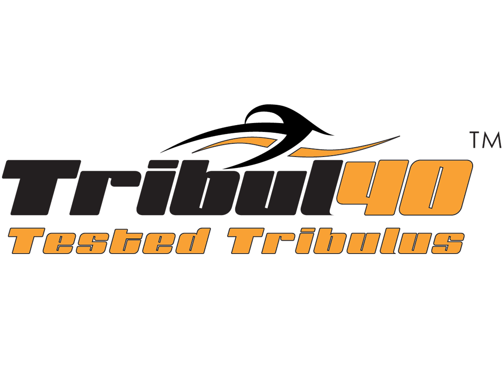 Tribul40